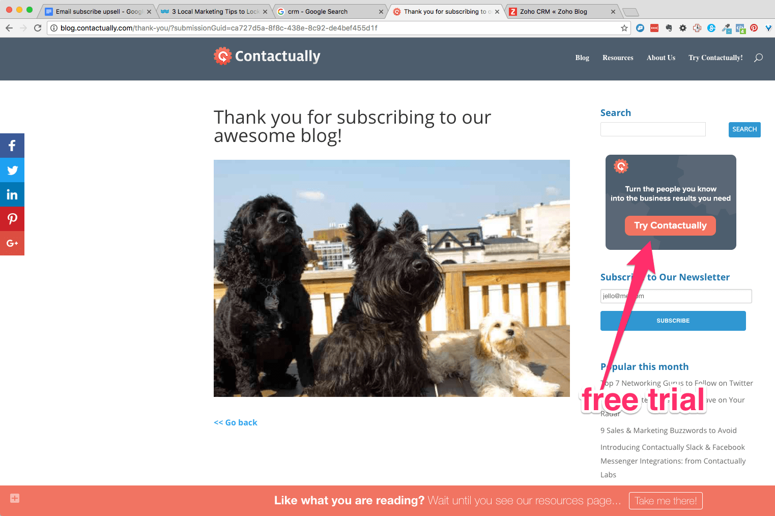 Thank you for subscribing to our awesome blog 1 1